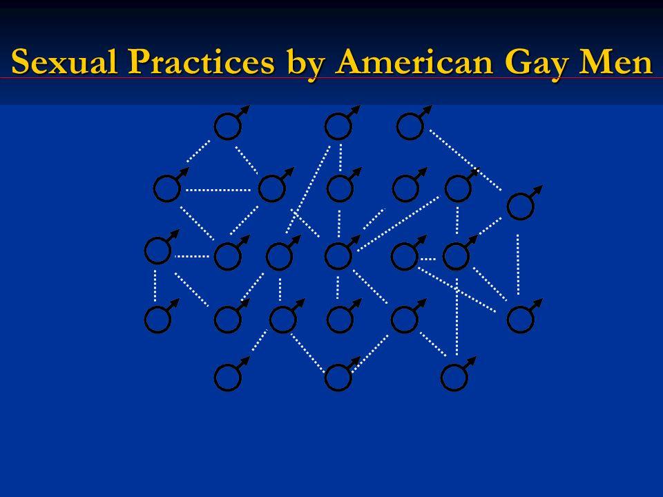 Sexual Practices by American Gay Men