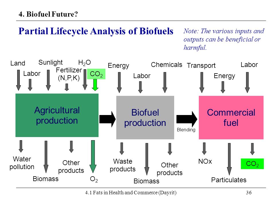 4.1 Fats in Health and Commerce (Dayrit)36 4. Biofuel Future? Partial Lifecycle Analysis of Biofuels Agricultural production CO 2 H2OH2O Fertilizer (N