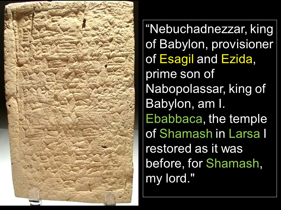 Nebuchadnezzar, king of Babylon, provisioner of Esagil and Ezida, prime son of Nabopolassar, king of Babylon, am I.