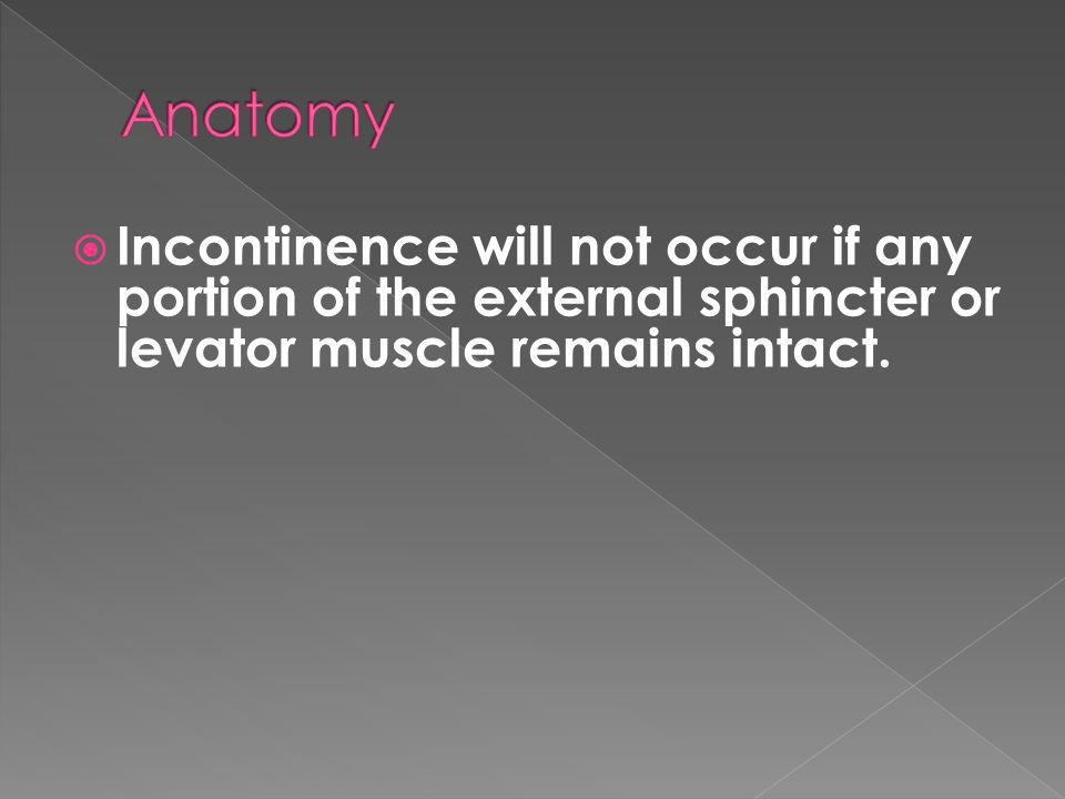 Incontinence will not occur if any portion of the external sphincter or levator muscle remains intact.