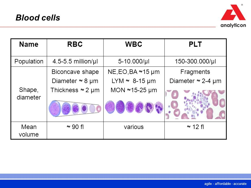 agile - affordable - accurate Blood cells NameRBCWBCPLT Population4.5-5.5 million/µl5-10.000/µl150-300.000/µl Shape, diameter Biconcave shape Diameter
