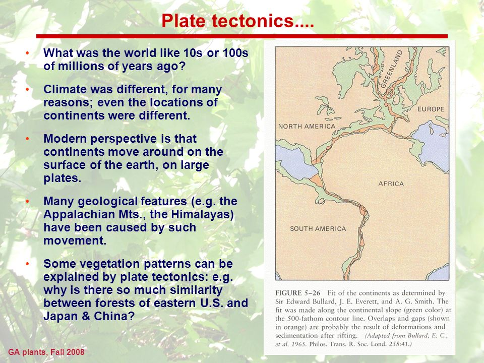 GA plants, Fall 2008 Plate tectonics....
