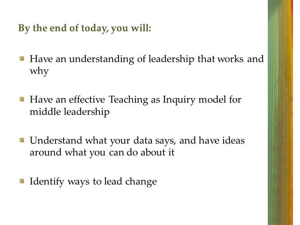 Leadership can make a powerful difference to student outcomes Leadership = An activity, not a position!