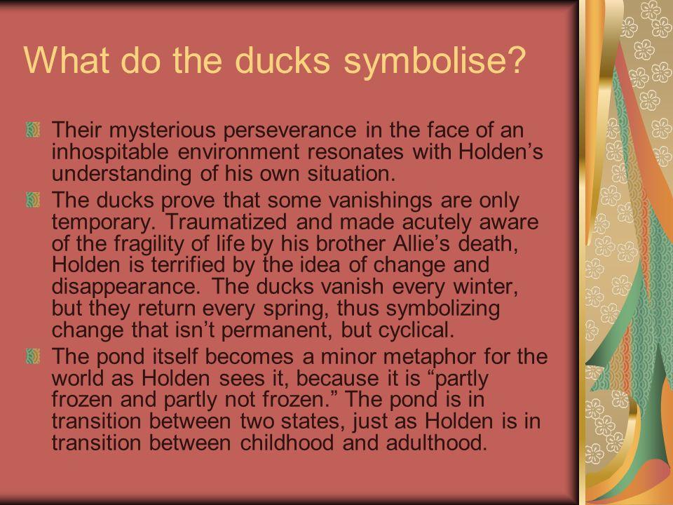What do the ducks symbolise.
