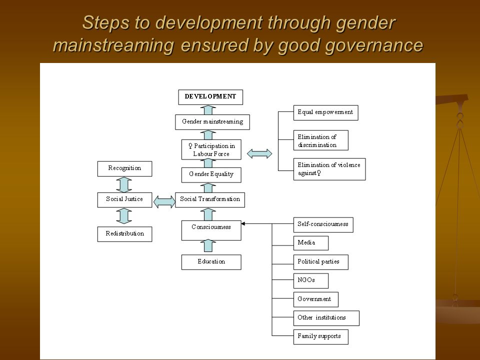 Steps to development through gender mainstreaming ensured by good governance