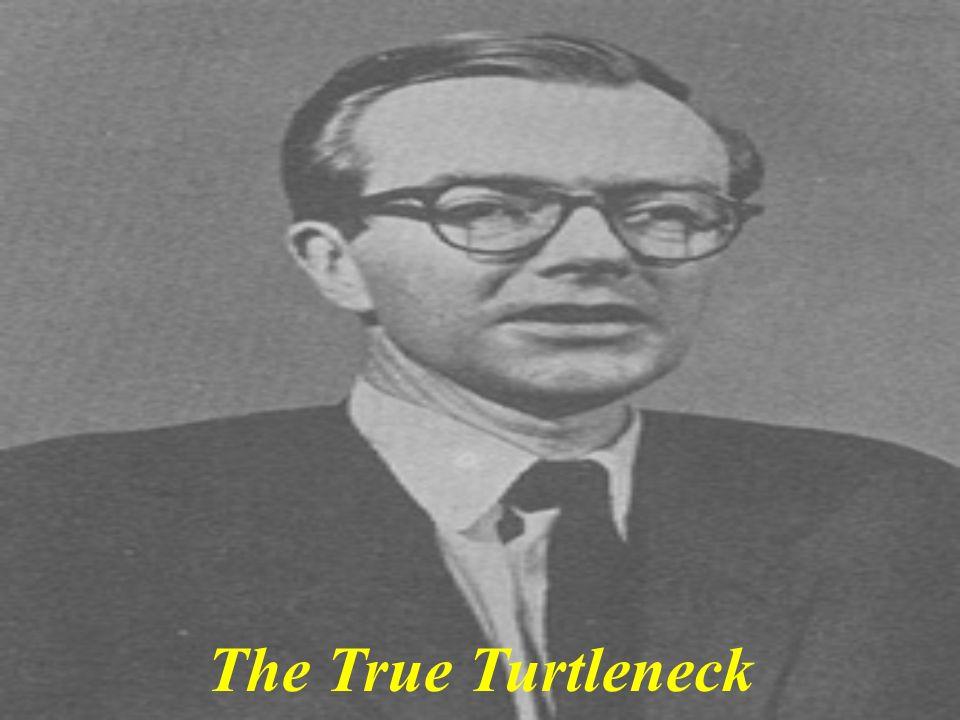 The True Turtleneck
