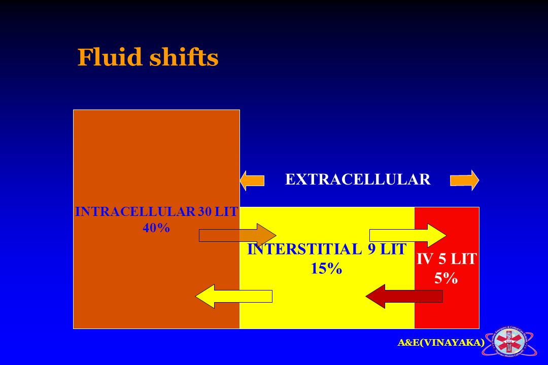 A&E(VINAYAKA) Fluid shifts INTRACELLULAR 30 LIT 40% INTERSTITIAL 9 LIT 15% IV 5 LIT 5% EXTRACELLULAR