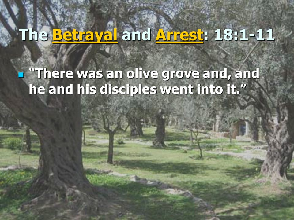 The Betrayal and Arrest: 18:1-11 There was an olive grove and, and he and his disciples went into it. There was an olive grove and, and he and his dis