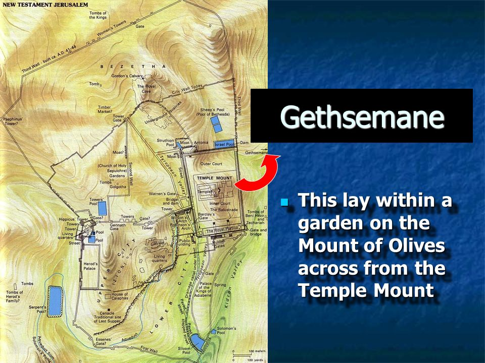 This lay within a garden on the Mount of Olives across from the Temple Mount This lay within a garden on the Mount of Olives across from the Temple Mo