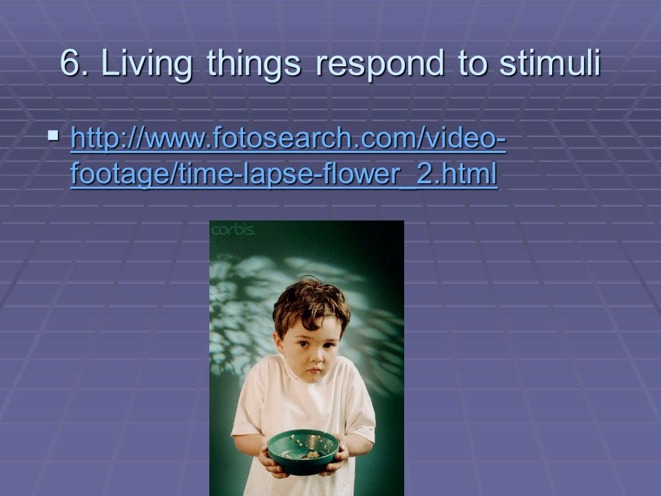 6. Living things respond to stimuli http://www.fotosearch.com/video- footage/time-lapse-flower_2.html http://www.fotosearch.com/video- footage/time-la