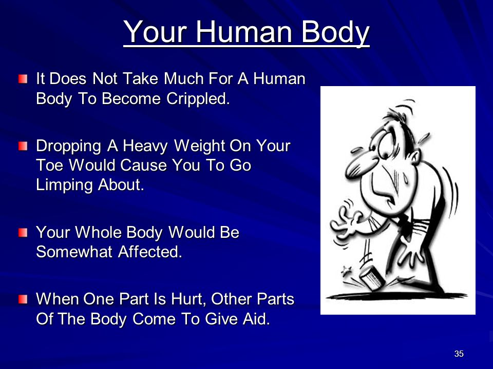 35 Your Human Body It Does Not Take Much For A Human Body To Become Crippled. Dropping A Heavy Weight On Your Toe Would Cause You To Go Limping About.