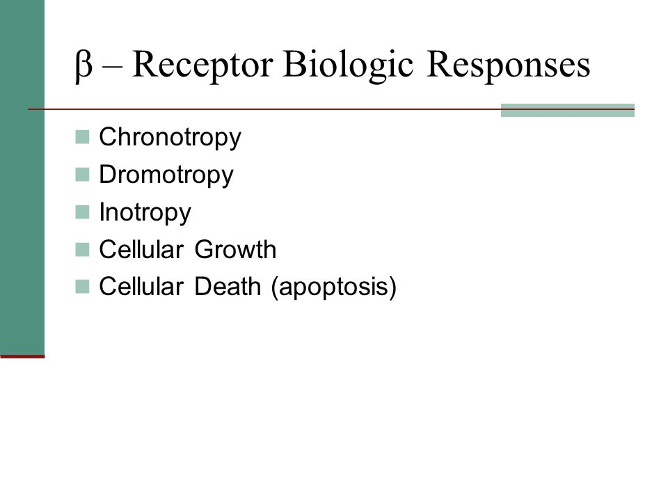β – Receptor Biologic Responses Chronotropy Dromotropy Inotropy Cellular Growth Cellular Death (apoptosis)