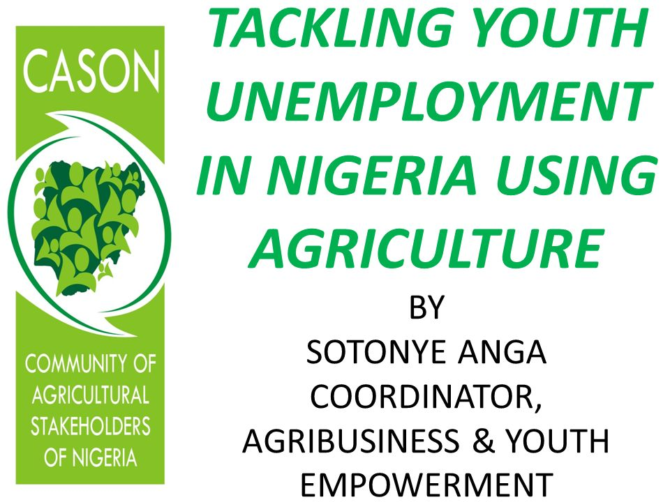 TACKLING YOUTH UNEMPLOYMENT IN NIGERIA USING AGRICULTURE BY SOTONYE ANGA COORDINATOR, AGRIBUSINESS & YOUTH EMPOWERMENT