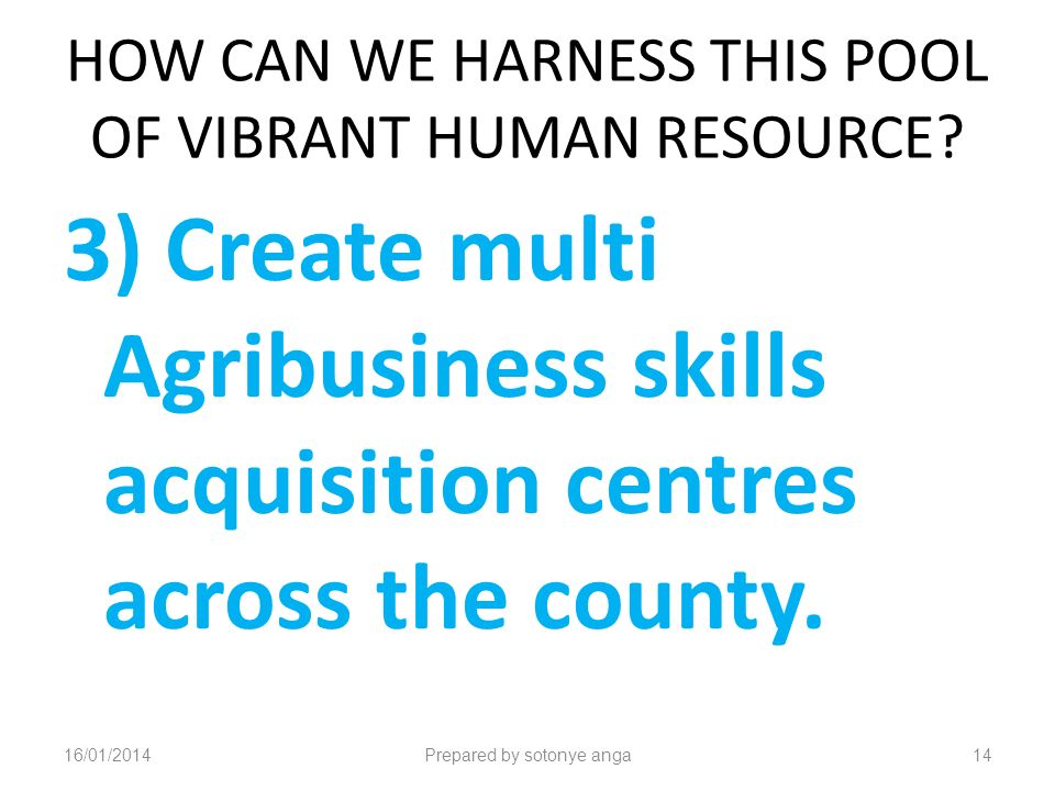 HOW CAN WE HARNESS THIS POOL OF VIBRANT HUMAN RESOURCE.