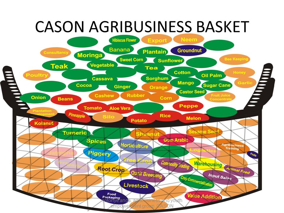 CASON AGRIBUSINESS BASKET sotonye anga, agribusiness and youth empowerment group, CASON