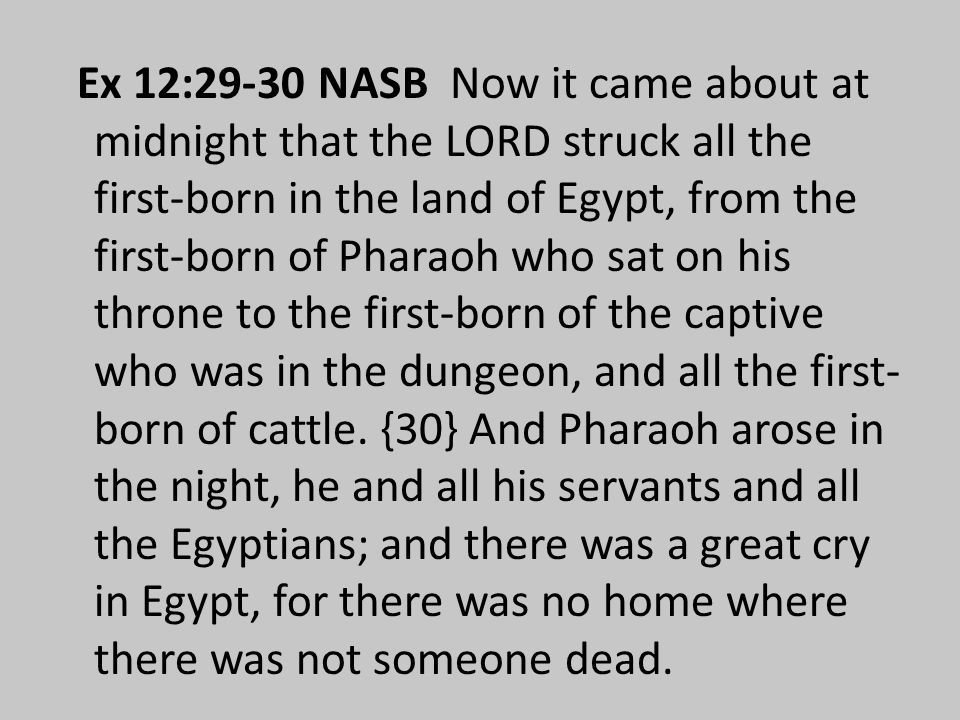 Ex 12:29-30 NASB Now it came about at midnight that the LORD struck all the first-born in the land of Egypt, from the first-born of Pharaoh who sat on his throne to the first-born of the captive who was in the dungeon, and all the first- born of cattle.