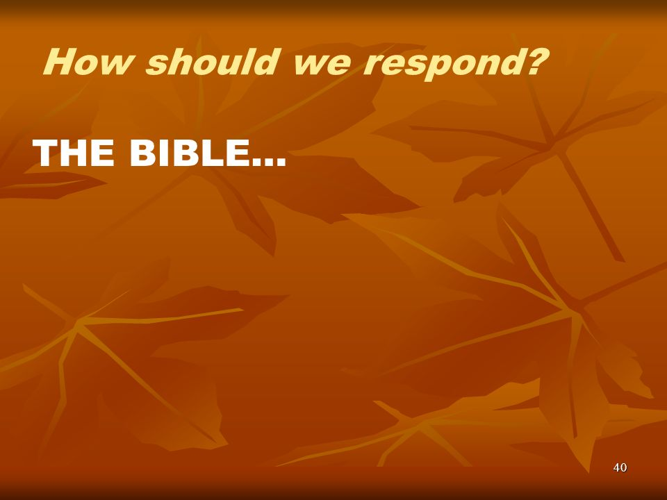 40 How should we respond? THE BIBLE…