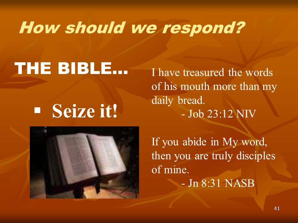 41 How should we respond? THE BIBLE… Seize it! I have treasured the words of his mouth more than my daily bread. - Job 23:12 NIV If you abide in My wo