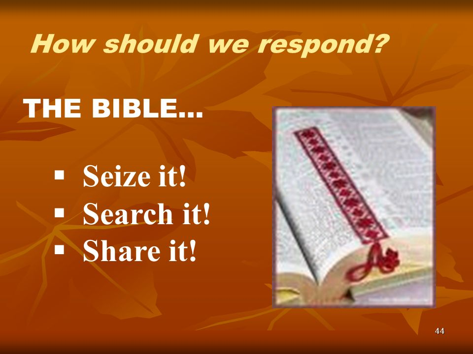 44 THE BIBLE… Seize it! Search it! Share it! How should we respond?