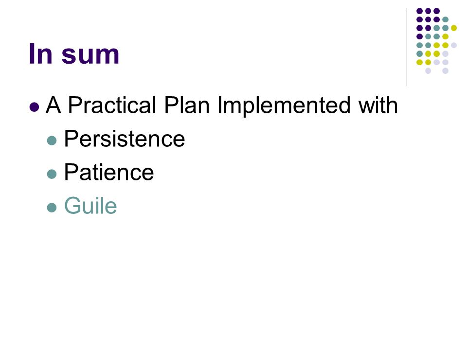 In sum A Practical Plan Implemented with Persistence Patience Guile