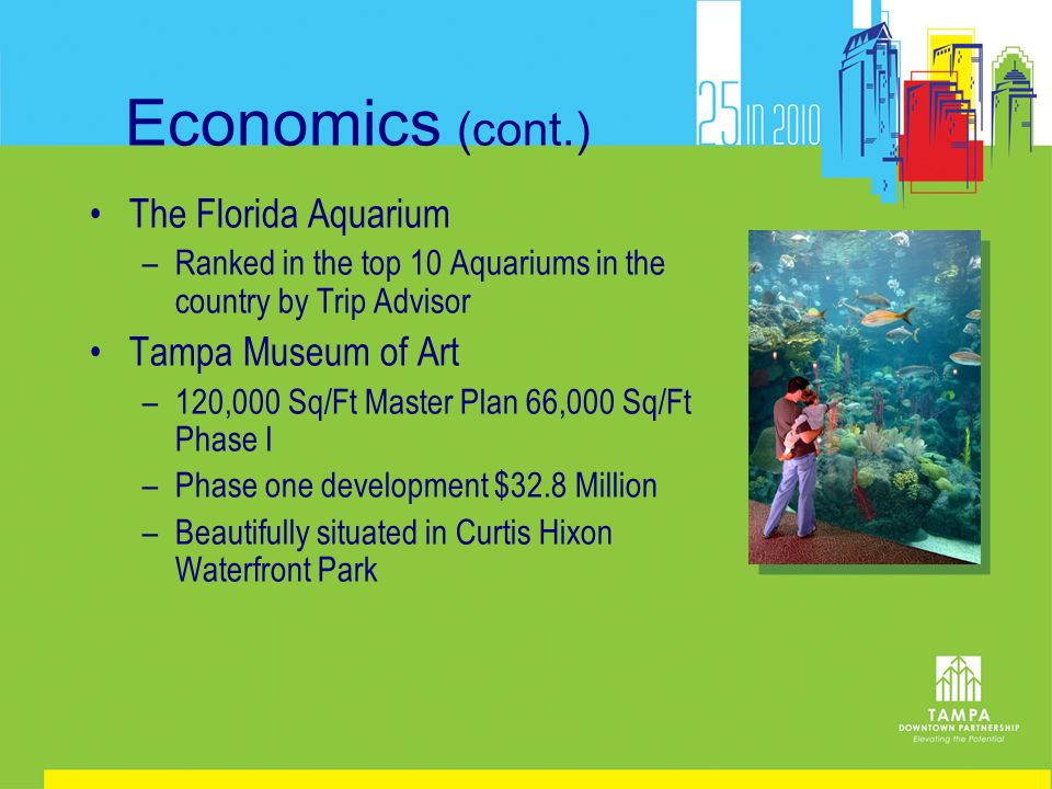 Economics (cont.) The Florida Aquarium –Ranked in the top 10 Aquariums in the country by Trip Advisor Tampa Museum of Art –120,000 Sq/Ft Master Plan 6