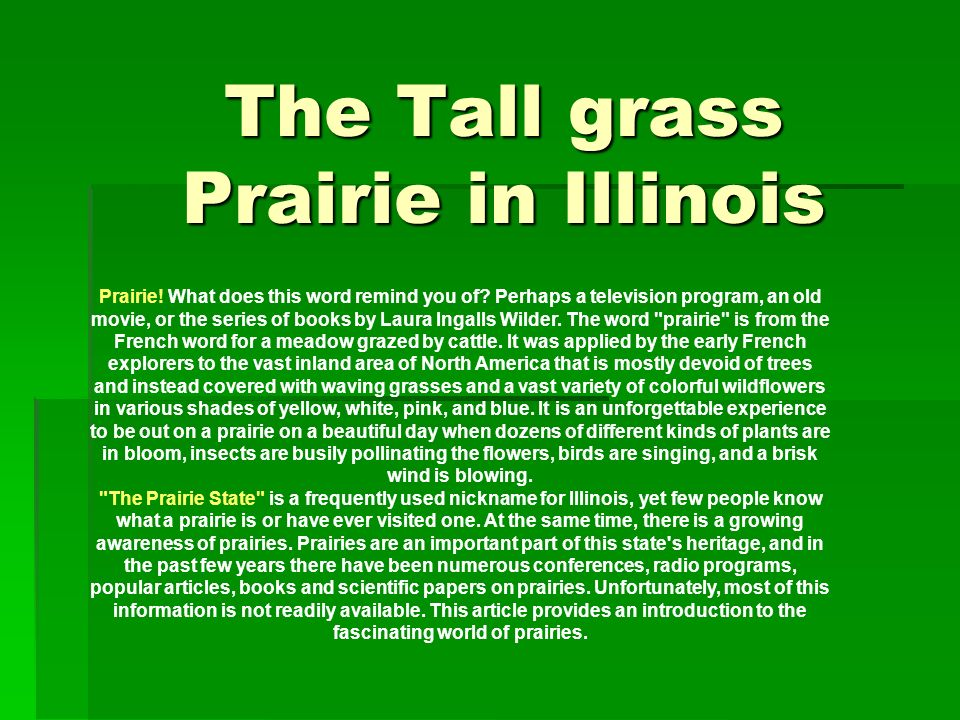 The Tall grass Prairie in Illinois Prairie! What does this word remind you of? Perhaps a television program, an old movie, or the series of books by L
