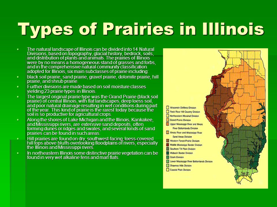Types of Prairies in Illinois The natural landscape of Illinois can be divided into 14 Natural Divisions, based on topography, glacial history, bedroc