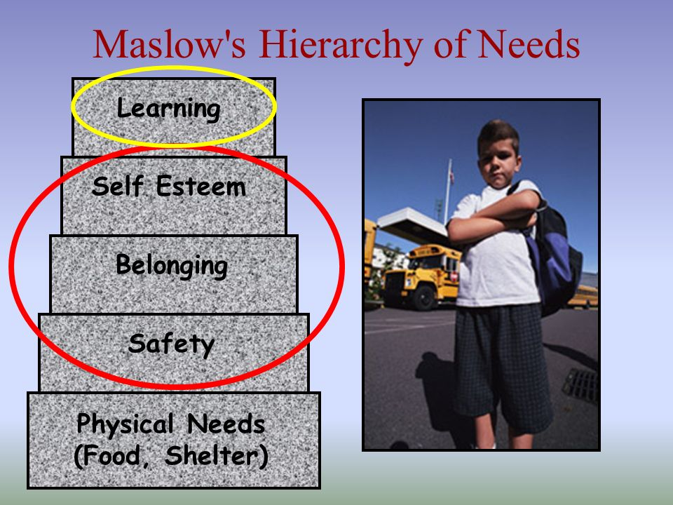 Maslow's Hierarchy of Needs Physical Needs (Food, Shelter) Safety Belonging Self Esteem Learning