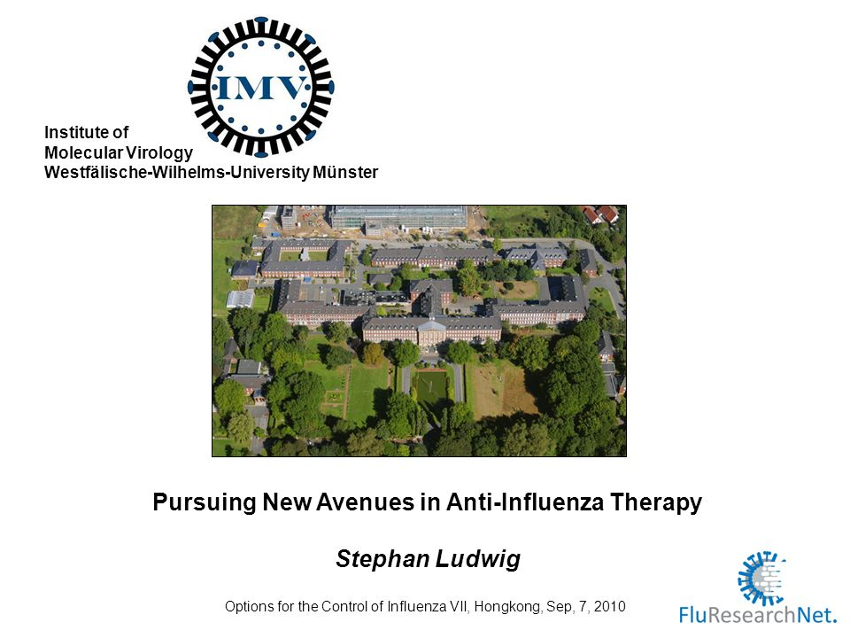 Institute of Molecular Virology Westfälische-Wilhelms-University Münster Pursuing New Avenues in Anti-Influenza Therapy Stephan Ludwig Options for the Control of Influenza VII, Hongkong, Sep, 7, 2010
