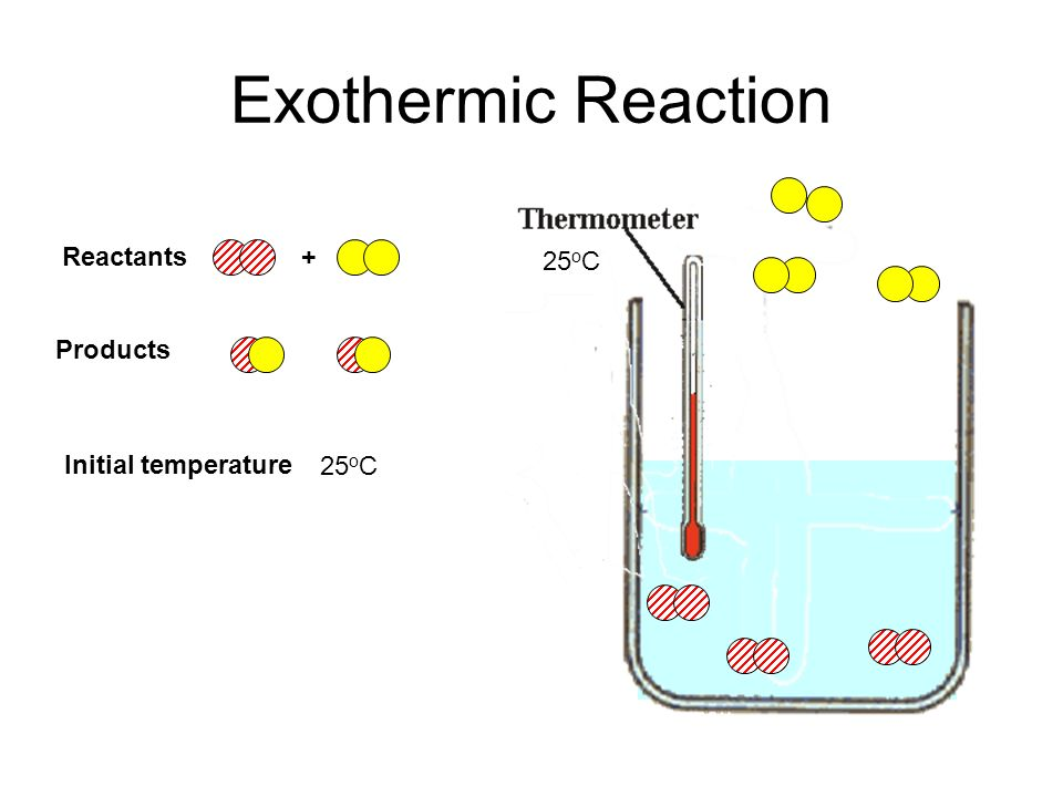 Exothermic Reaction 25 o C Initial temperature Reactants+ Products