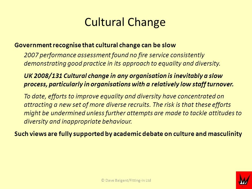Cultural Change Government recognise that cultural change can be slow 2007 performance assessment found no fire service consistently demonstrating good practice in its approach to equality and diversity.