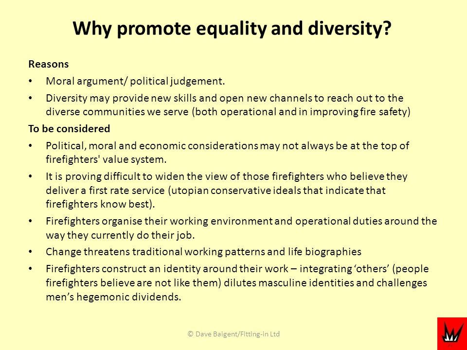 Why promote equality and diversity. Reasons Moral argument/ political judgement.
