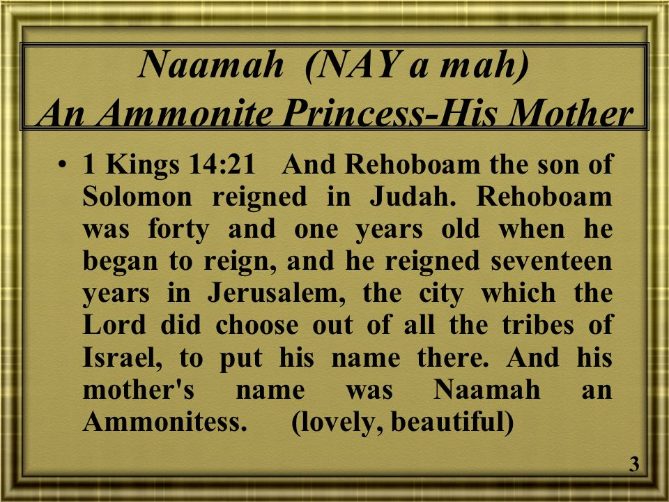 24 Jeroboam Likely Thought In some ways I have been successful in defying Jehovah God for the entire 22 years of my reign.
