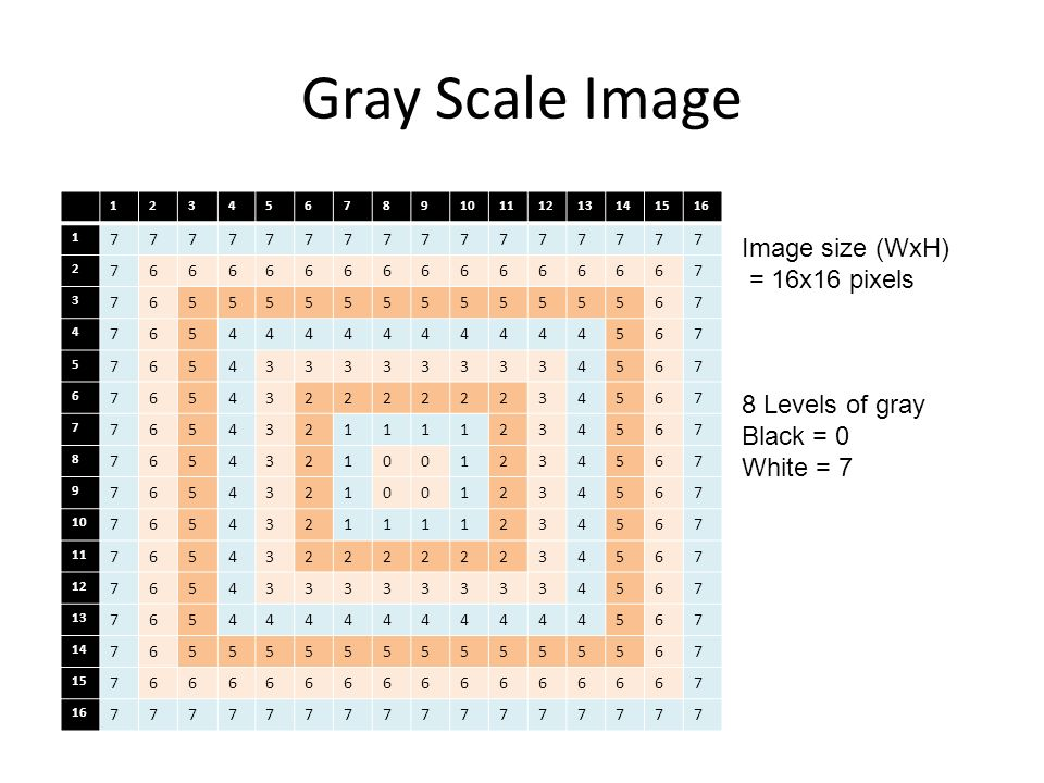 Gray Scale Image Image size (WxH) = 16x16 pixels 8 Levels of gray Black = 0 White = 7