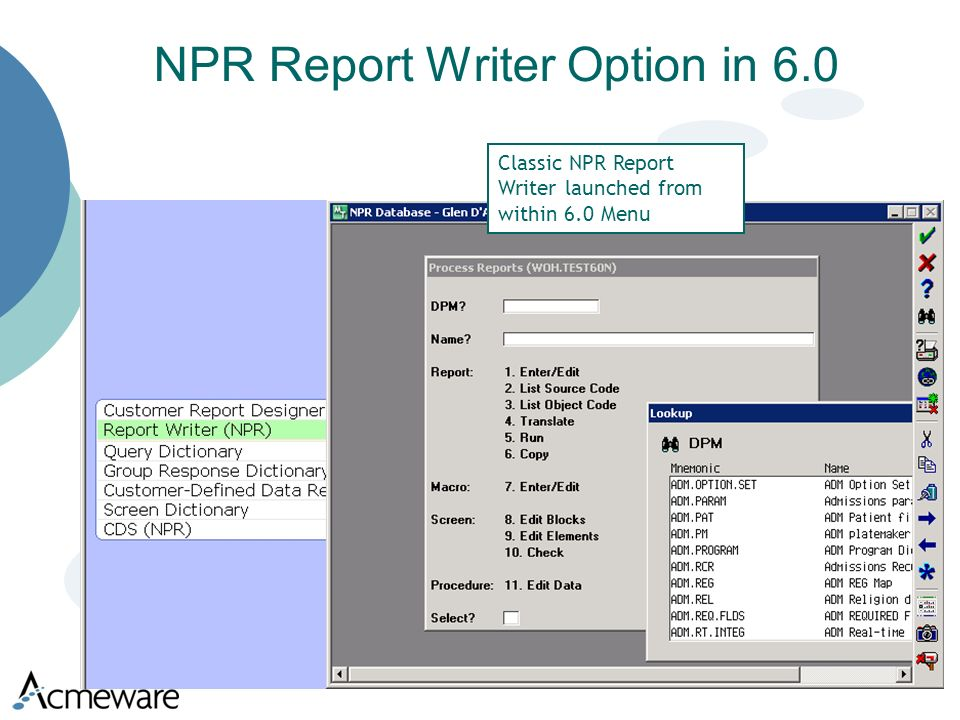 NPR Report Writer Option in 6.0 Classic NPR Report Writer launched from within 6.0 Menu