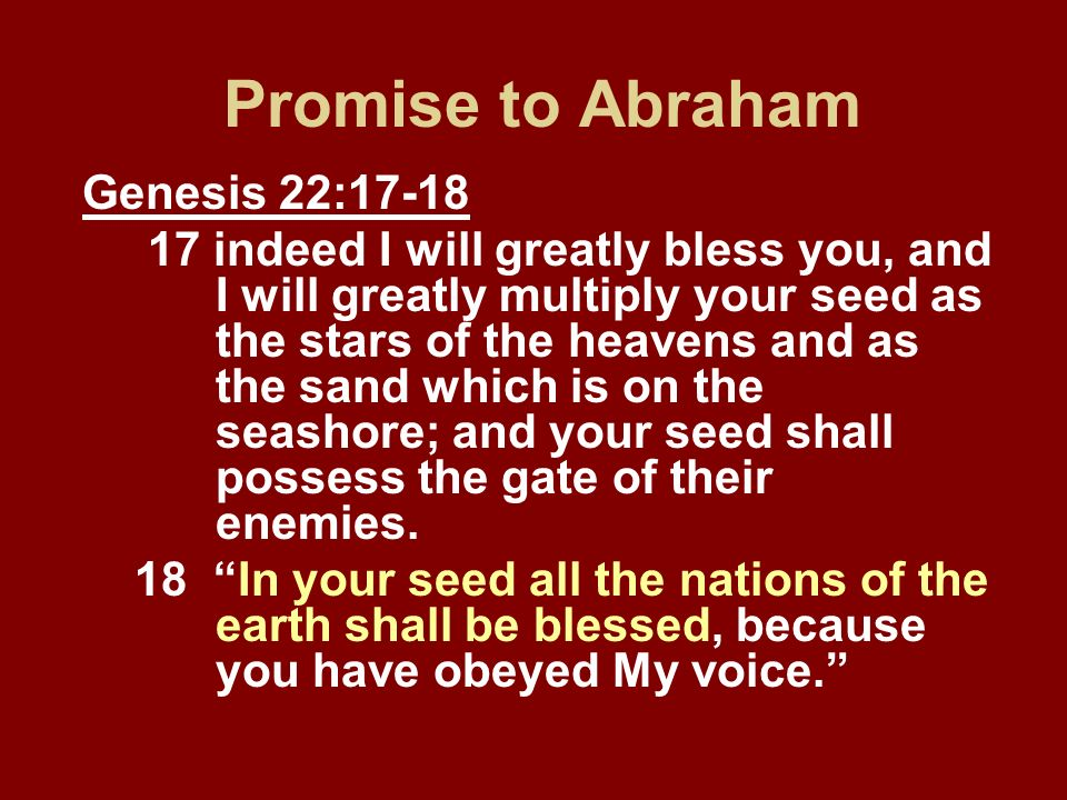 Promise to Abraham Genesis 22:17-18 17 indeed I will greatly bless you, and I will greatly multiply your seed as the stars of the heavens and as the s