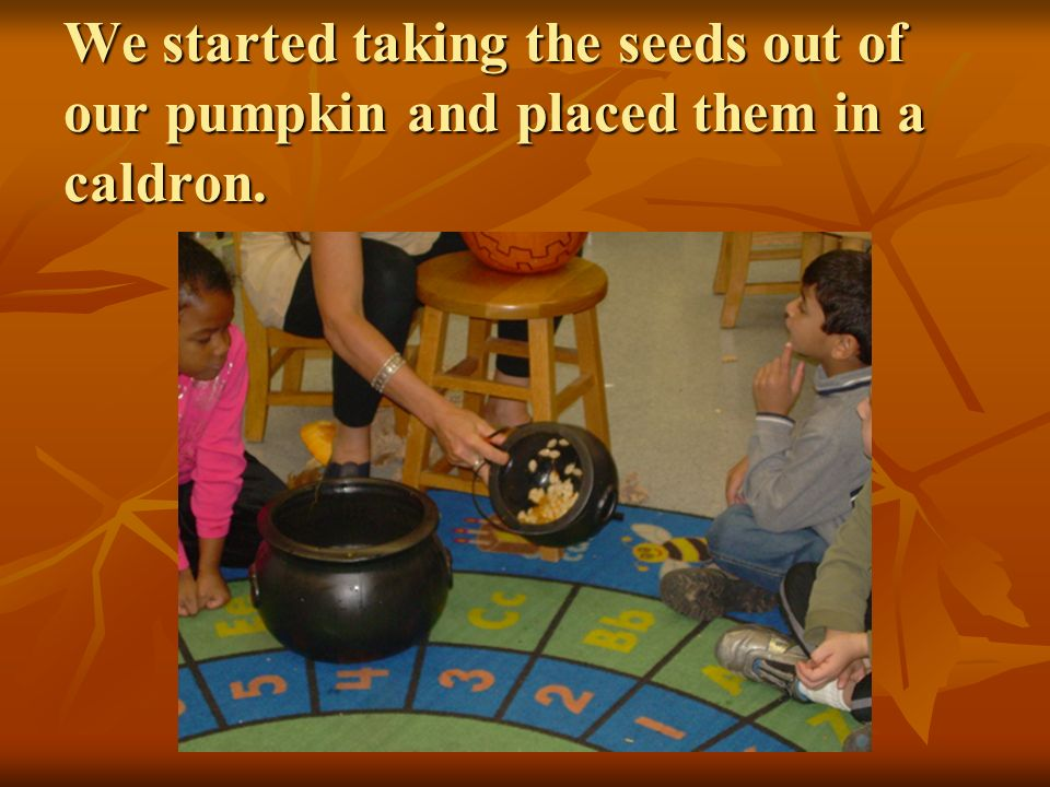 We started taking the seeds out of our pumpkin and placed them in a caldron.