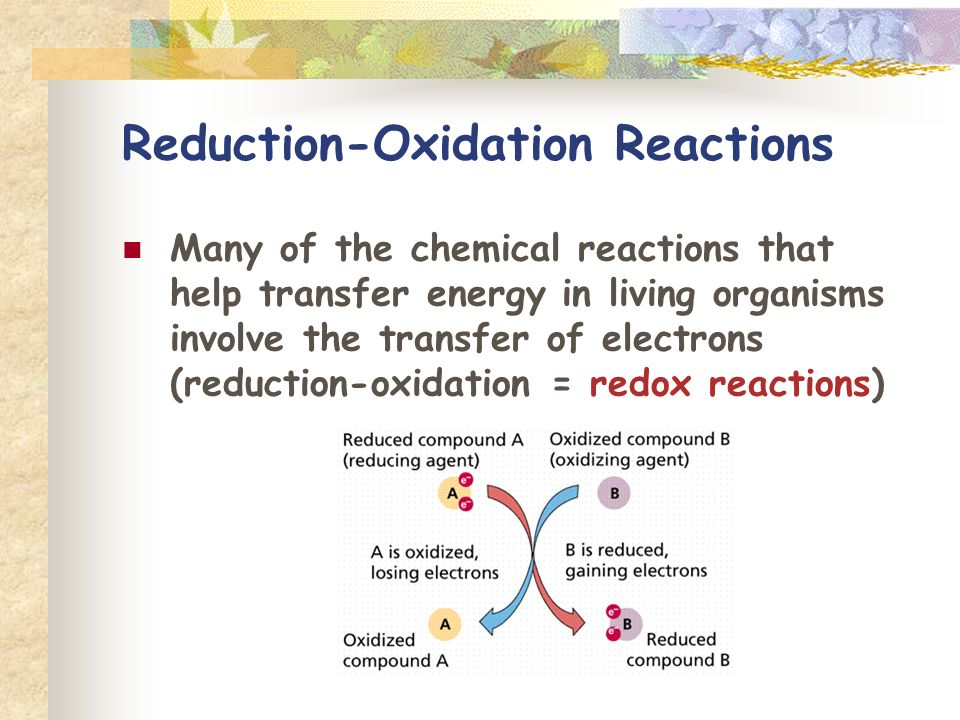 Reduction-Oxidation Reactions Many of the chemical reactions that help transfer energy in living organisms involve the transfer of electrons (reduction-oxidation = redox reactions)