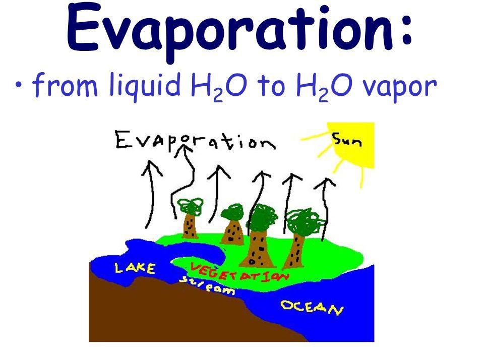 Evaporation: from liquid H 2 O to H 2 O vapor