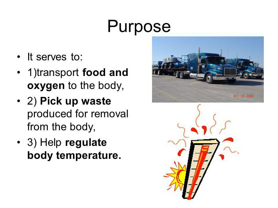 Purpose It serves to: 1)transport food and oxygen to the body, 2) Pick up waste produced for removal from the body, 3) Help regulate body temperature.
