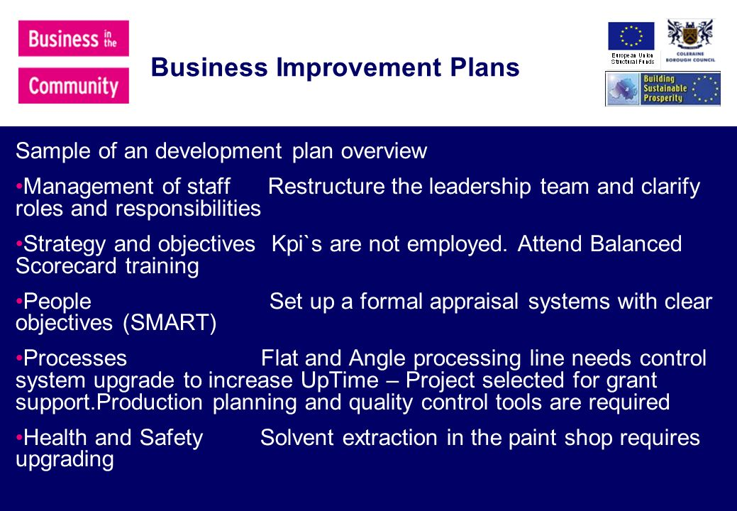 Business Improvement Plans Sample of an development plan overview Management of staff Restructure the leadership team and clarify roles and responsibilities Strategy and objectives Kpi`s are not employed.