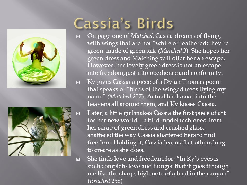 On page one of Matched, Cassia dreams of flying, with wings that are not white or feathered: theyre green, made of green silk (Matched 3). She hopes h