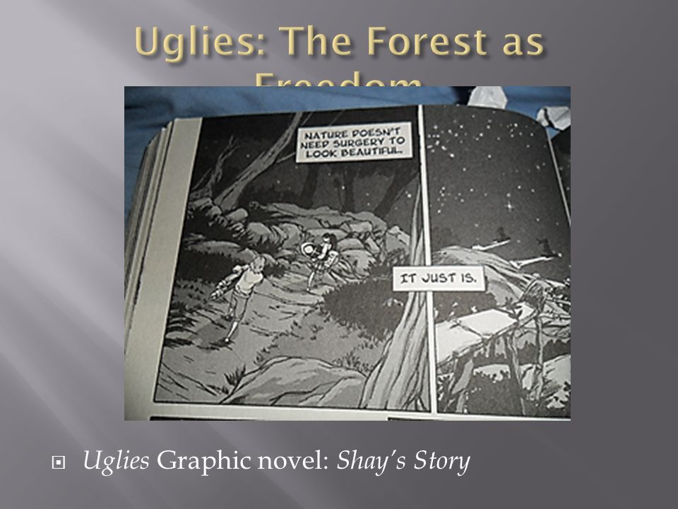 Uglies Graphic novel: Shays Story