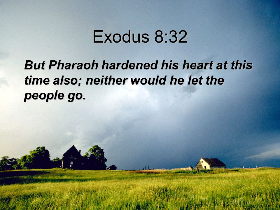 35 Exodus 8:32 But Pharaoh hardened his heart at this time also; neither would he let the people go.