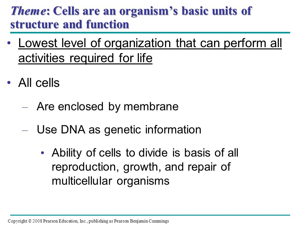 Theme: Cells are an organisms basic units of structure and function Lowest level of organization that can perform all activities required for life All