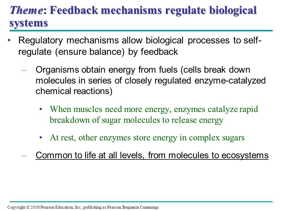 Theme: Feedback mechanisms regulate biological systems Regulatory mechanisms allow biological processes to self- regulate (ensure balance) by feedback
