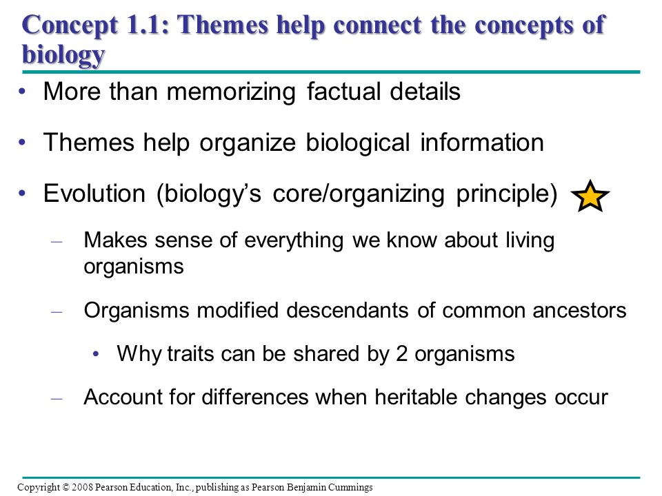 Concept 1.1: Themes help connect the concepts of biology More than memorizing factual details Themes help organize biological information Evolution (b