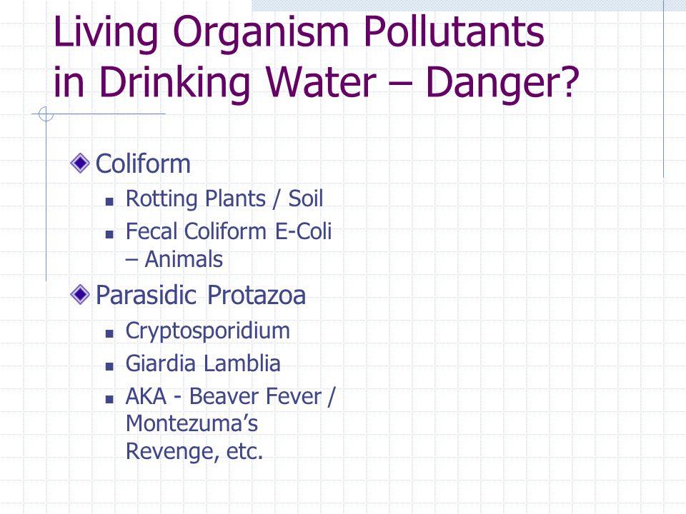 Living Organism Pollutants in Drinking Water – Danger.