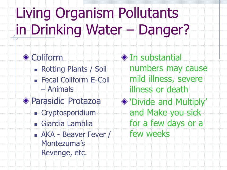 Living Organism Pollutants in Drinking Water – Danger? Coliform Rotting Plants / Soil Fecal Coliform E-Coli – Animals Parasidic Protazoa Cryptosporidi