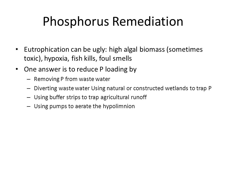 Phosphorus Remediation Eutrophication can be ugly: high algal biomass (sometimes toxic), hypoxia, fish kills, foul smells One answer is to reduce P lo